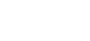 Landair Surveys logo